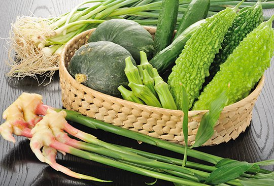 新鮮朝採れ野菜販売
